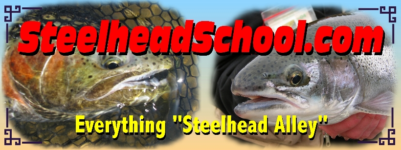 Pennsylvania ohio oh steelhead guide service guided trout for Best fishing in pa
