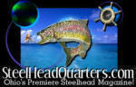 "Northeast Ohio's Premiere Online Steelhead Guide and Website, for ""Reel-Fly-Fishing-Information!"" Serving the Grand & Chagrin Rivers since 2001!"